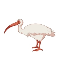 Cartoon smiling Ibis vector image
