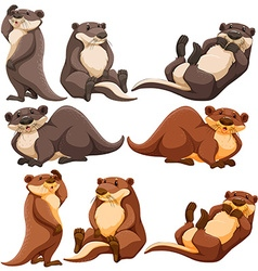 Cute otters in different actions vector