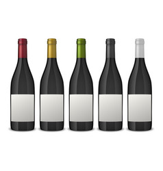 5 realistic black wine bottles with white vector