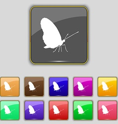 Butterfly icon sign set with eleven colored vector