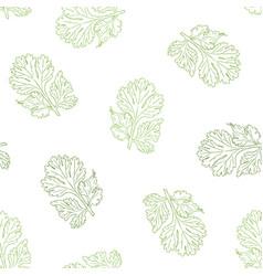 Coriander hand drawn seamless pattern vector