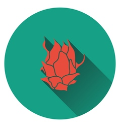 Dragon fruit icon vector image