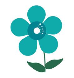 Jasmine flower decoration image vector