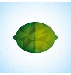 Fruit icon design vector