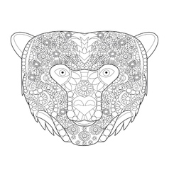 Bear head coloring for adults vector