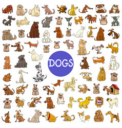 Cartoon dog characters huge set vector