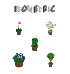 isometric houseplant set of flowerpot grower vector image vector image