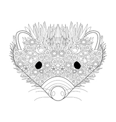 Hedgehog head coloring for adults vector