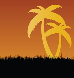 Palm in nature vector