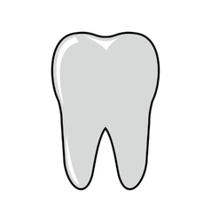 Tooth cartoon icon isolated on white background vector image vector image