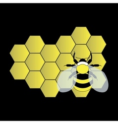 Bee on honeycomb vector