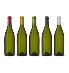 5 realistic green wine bottles without vector