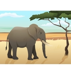 Beautiful wild african animal  big vector