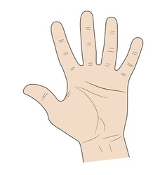 Five fingers of a hand vector