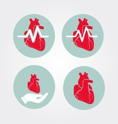 Human heart icon set with cardiogram and human vector
