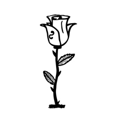 Rose sketch black outline on white background vector image