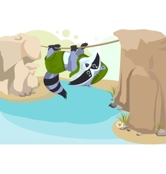 Scout raccoon Mountaineer rope Scout crossing vector image