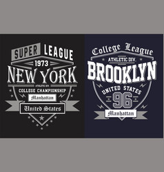 set college new york city brooklyn vector image vector image