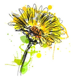 Colored hand sketch flower vector image