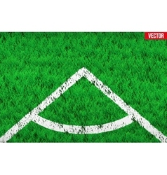 White angular lines on grass field vector