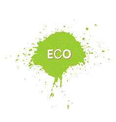 eco fresh vegan bio raw organic green design vector image vector image
