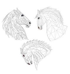 horses heads polygons outline hand draw vector image