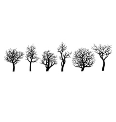 Set of trees sihlouette on white background vector image vector image