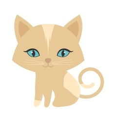 small kitten sitting blue eyes vector image