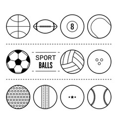 Sports balls for football basketball tennis vector