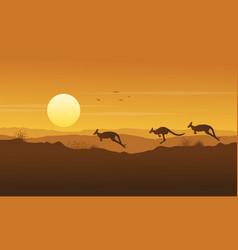 beauty scenery kangaroo silhouette collection vector image vector image