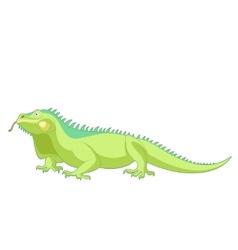 Cartoon smiling Iguana vector image vector image