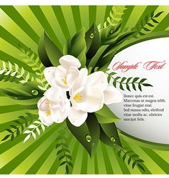 fresh green abstract spring background vector image vector image