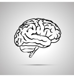 Human brain black icon vector image