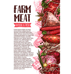 sausage and meat farm product banner template vector image