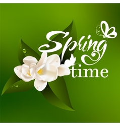 Typographic Design Lettering Spring design with vector image