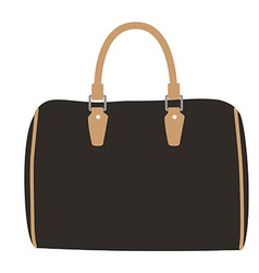 Woman bag vector image