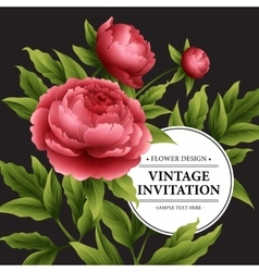 Luxurious peony flower and leaves greeting card vector