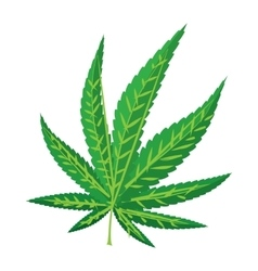 Marijuana leaf icon cartoon style vector