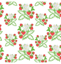 pattern with strawberry vector image vector image