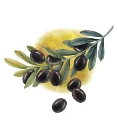 Watercolor black olive branch vector image
