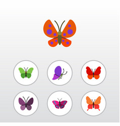 Flat moth set of monarch violet wing danaus vector
