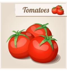 Detailed icon tomatoes vector