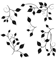 Collection for designers branches with foliage vector