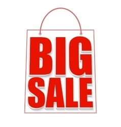 Big sale advertisement vector