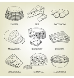 Set of different kinds of graphic cheese vector