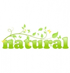 eco natural vector image vector image
