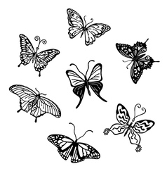Grey butterfly logo set vector image vector image