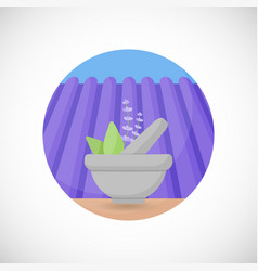 Lavender in mortar and pestle flat icon vector