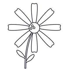 Daisy flower decoration line vector
