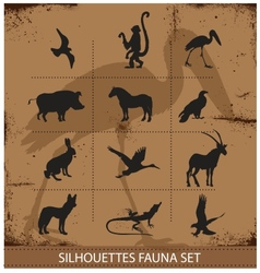 Safari fauna symbols silhouette set collection vector